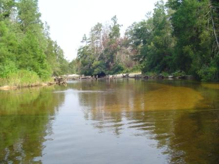 Big Escambia Creek