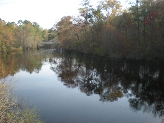 Link to the Suwannee River Water Management District.