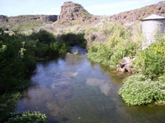 Devils Washbowl Spring near Kimberly, ID - USGS file photo