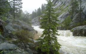 Lake Fork Payette River above Jumbo Creek near McCall, ID - USGS file photo flood