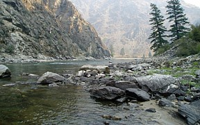 MF Salmon River at mouth near Shoup, ID - USGS file photo