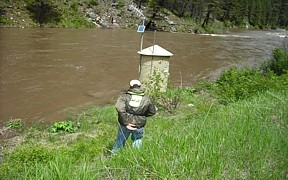SF Salmon River near Krassel Ranger Station, ID - High flow June 2010